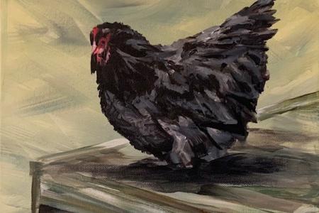 """""""Chicken On A Sunbed"""""""
